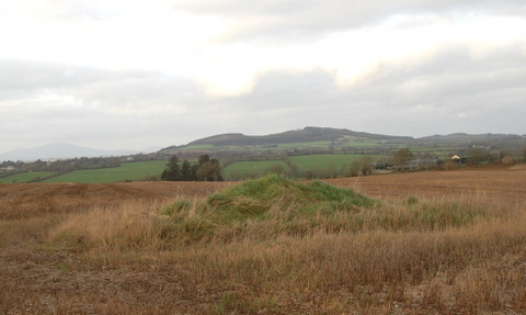 Cillín mound looking northwest
