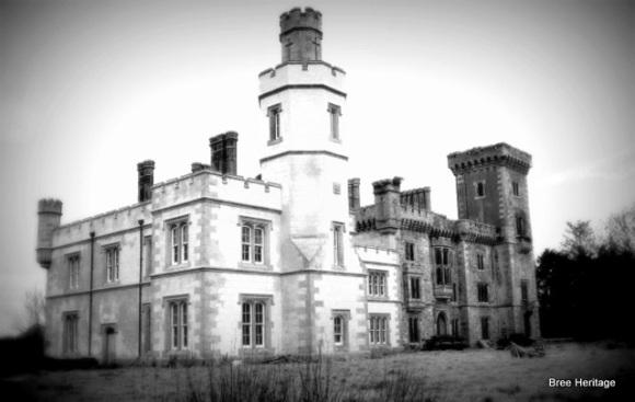 Wilton Castle Wexford