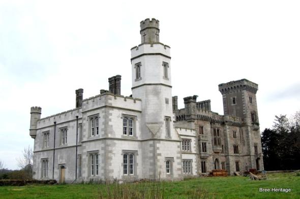 Wilton castle, bree, wexford